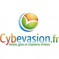 Logo cybevasion